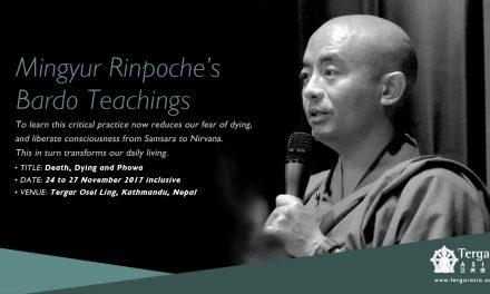 Mingyur Rinpoche's Bardo Teachings